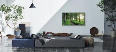 Image d'une scène dans un salon illustrant le concept Décor d'intérieur